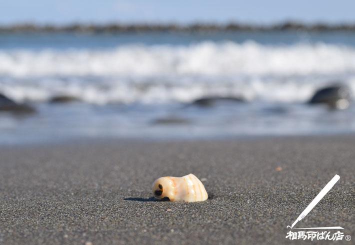 高鍋町 蚊口の浜を散歩