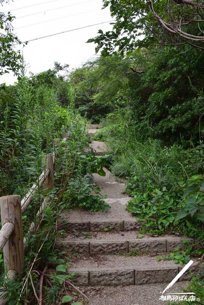 大バエ灯台に続く茂道