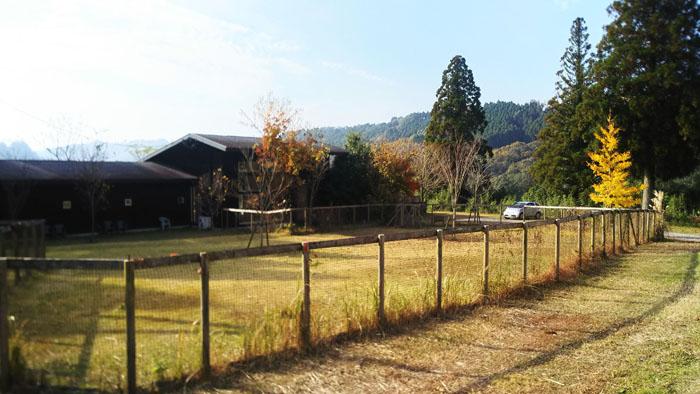 宮崎県木城町の自然に囲まれたホテル