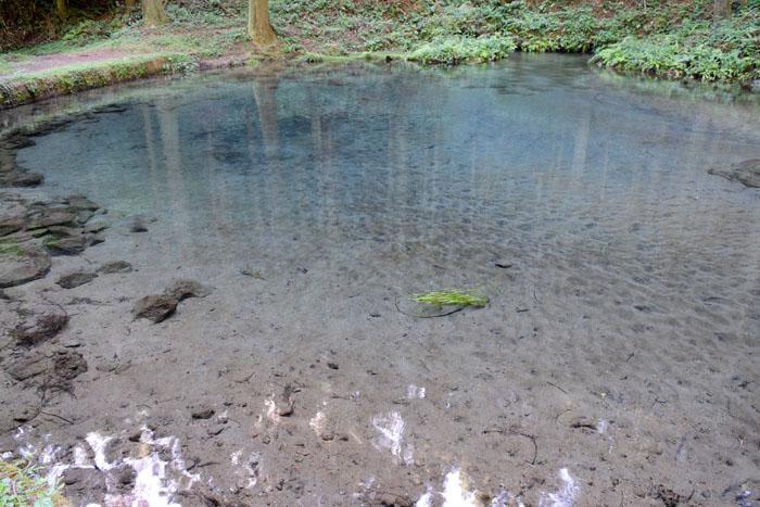 霧島裂罅水が流れ込む小池