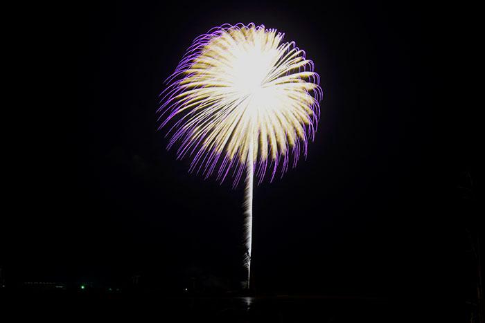 風になびく大きな一輪の花火